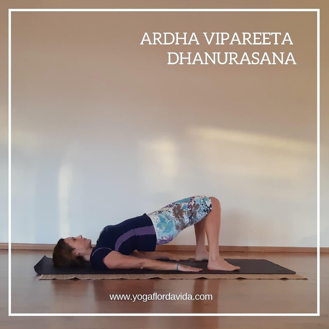 Ardha Vipareeta Dhanurasana